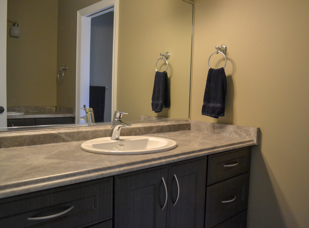 Posh Bathroom Renovation 4